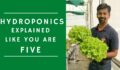 Hydroponics Basics – Simple explanation for beginners