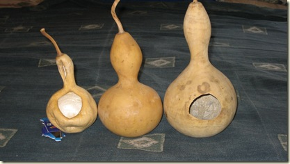 Gourd Pictures 012