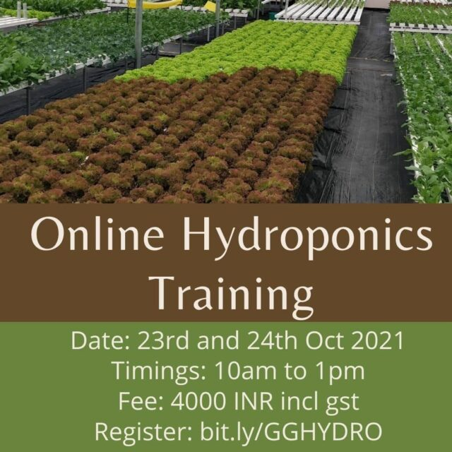 Hydroponics training online  Registration link in Bio  Due to popular demand, our hydroponics trainings are back. Ever since I started putting out videos on Youtube there has been lots of requests for online training sessions. We took our time to prepare a good training material that covers all aspects considering both hydroponics as a science and also as a business.  A solid foundation makes for an excellent understanding of any topic and Hydroponics is No different.  With ths course, you will be able to achieve  - Have a strong hold on the fundamentals of growing plants. - Understand plant science better and take impactful decisions - Appreciate Hydroponics as a technology and understand how to use it. - Have a thorough understanding of different hydroponics systems and their usage - Better crop planning for production (home garden or farm) - Failsafe business planning on commercial Hydroponics. - Launch a business in Hydroponics  #hydroponicstraining #hydroponicsworkshop #onlinetraining  #hydroponics101 #hydroponicsindia #urbanfarming #plantaseedday #growyourownfood  #hydroponicsclasses #hydroponicscoach #biggreen #learnhydroponics  #agritech #agtech #horticulture  #hydroponicsystem #greenhousegrown #plantaseedday #foodsecurity #iamamodernfarmer #modernfarming #growers #urbanagriculture #growingfood #realfood #cleaneating #plantbased